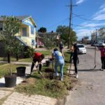 soul tree planting 4